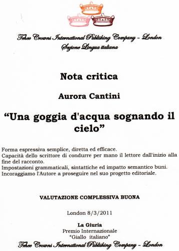 Nota critica London Accademy, Giallo Italiano per Aurora Cantini